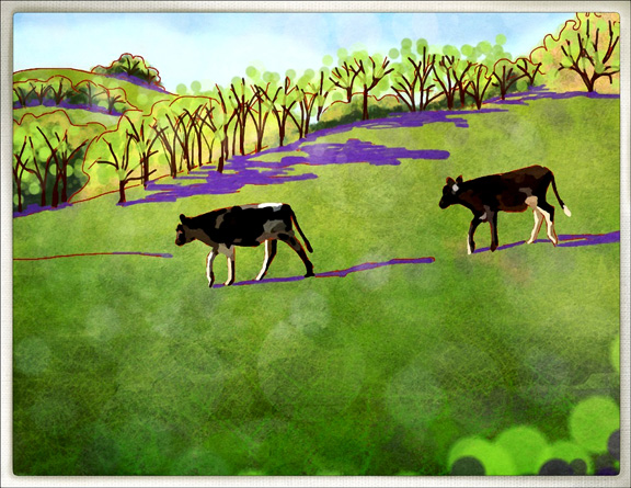 This is a drawing I did on my I pad of the picturesque cows sauntering through the Ranch back property.